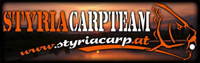 Verlinkung HP Styriacarp Banner